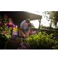 FLORAGARD Pflanzerde »Aktiv«, für Geranien und Balkonpflanzen-Thumbnail
