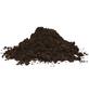 FLORAGARD Pflanzerde »Aktiv«, für Grünpflanzen, Palmen-Thumbnail