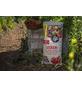 FLORAGARD Pflanzerde »Bio«, für Gemüse, Tomaten, torffrei-Thumbnail