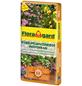 FLORAGARD Pflanzerde »Mediterran«, für Kübelpflanzen-Thumbnail