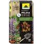 NEUDORFF Pflanzerde »NeudoHum«, für Gehölzen, Sträuchern, Stauden und Sommerblumen, torffrei-Thumbnail