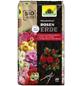 NEUDORFF Pflanzerde »NeudoHum«, für Rosengewächse im Freiland und Kübel, torffrei-Thumbnail