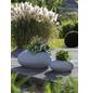 SCHEURICH Pflanzgefäß »FLOW«, ØxH: 73 x 35,2 cm, grau-Thumbnail
