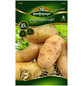 Quedlinburger Pflanzkartoffel, Solanum tuberosum » Asparges«, 10 Stück-Thumbnail