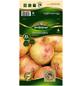 Quedlinburger Pflanzkartoffel, Solanum tuberosum »King Edward «, 10 Stück-Thumbnail