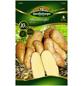 Quedlinburger Pflanzkartoffel, Solanum tuberosum »Mandel«, 10 Stück-Thumbnail