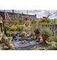 GARDENA Pflanzmatte »city gardening«, B x L: 120 x 180 cm-Thumbnail