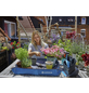 GARDENA Pflanzmatte »city gardening«, Polypropylen, blau, BxL: 0,8 x 0,8 m-Thumbnail