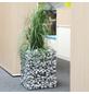 BELLISSA Pflanzsäule, BxHxL: 40 x 50 x 40 cm, kunststoff/stahl-Thumbnail