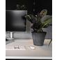 ARTSTONE Pflanztopf »Artstone«, Breite: 27 cm, schwarz, Kunststoff-Thumbnail