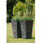 ARTSTONE Pflanztopf »Artstone«, Breite: 35 cm, schwarz, Kunststoff-Thumbnail