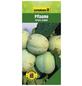 GARTENKRONE Pflaume, Prunus domestica »Grass Green«, Früchte: süß-säuerlich, zum Verzehr geeignet-Thumbnail