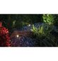PAULMANN Plug & Shine Spot Set »PLANTINI«, 7,5 W, dimmbar-Thumbnail