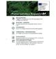 Portugesiche Lorbeerkische, Prunus lusitanica »Angustifolia«, Blütenfarbe weiß-Thumbnail