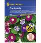 KIEPENKERL Prunkwinde/Trichterwinde, Ipomoea tricolor, Samen, Blüte: mehrfarbig-Thumbnail