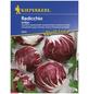 KIEPENKERL Radicchio intybus var.foliosum Chicorium-Thumbnail