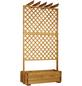 PROMADINO Rankgitter, BxHxT: 140 x 200 x 64,5 cm, Holz-Thumbnail