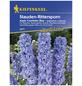 KIEPENKERL Rittersporn, Delphinium elatum, Samen, Blüte: blau-Thumbnail