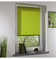 LIEDECO Rollo, grün, Klemmfix, Polyester-Thumbnail