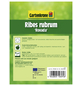 GARTENKRONE Rote Johannisbeere Ribes rubrum »Rovada«-Thumbnail