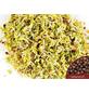 SAATGUT DILLMANN Samen Bio Keimsprossen Broccoli-Thumbnail