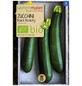 SAMEN MAIER Samen Bio Zucchini, Black Beauty-Thumbnail