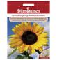 DÜRR SAMEN Samen Gründüngung Sonnenblumen-Thumbnail