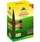 NEUDORFF Samen »LückenLos«, 2,5 kg, schützt vor Rasenlücken-Thumbnail