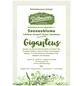 SAATGUT DILLMANN Samen Sonnenblume Giganteus-Thumbnail