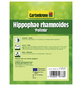 GARTENKRONE Sanddorn, männlich, Hippophae rhamnoides »Pollmix«, gelb, winterhart-Thumbnail