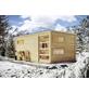 KARIBU Saunahaus »Walk«, BxTxH: 508 x 276 x 210 cm, 9 kW Bio-Kombi-Ofen mit ext. Steuerung-Thumbnail
