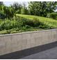 EHL Schalungsstein, BxHxL: 17,5 x 50 x 25 cm, glatt, Beton-Thumbnail