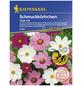 KIEPENKERL Schmuckkörbchen, Valerianella locusta, Samen, Blüte: mehrfarbig-Thumbnail