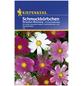 KIEPENKERL Schmuckkörchen, Cosmos bipinnatus, Samen, Blüte: mehrfarbig-Thumbnail