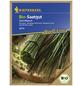 KIEPENKERL Schnittlauch Allium schoenoprasum-Thumbnail
