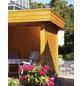 WOLFF Seitenwand für Gartenhäuser, B x H: 287  x 274  cm-Thumbnail
