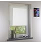 LIEDECO Seitenzugrollo, Weiß, Höhe: 150 cm-Thumbnail