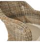 ploß® Sessel »Lambrini«, BxHxT: 67 x 87 x 60 cm, Polyrattan/Polyester/Aluminium-Thumbnail