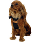 Sicherheitsgurt, für Hunde, Nylon, schwarz-Thumbnail