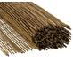 MR. GARDENER Sichtschutzmatte, Bambus, LxH: 300 x 100 cm-Thumbnail