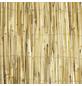 WINDHAGER Sichtschutzmatte, Schilfrohr, LxH: 600 x 180 cm-Thumbnail