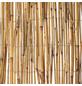 WINDHAGER Sichtschutzmatte, Schilfrohr, LxH: 600 x 200 cm-Thumbnail
