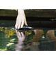 OASE Skimmer »AquaSkim 40«-Thumbnail