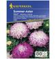 KIEPENKERL Sommeraster, Callistephus chinensis, Samen, Blüte: pink/weiß-Thumbnail
