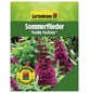 GARTENKRONE Sommerflieder, Buddleja davidii »Funky Fuchsia«, Blütenfarbe rosa/pink-Thumbnail