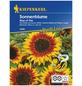 KIEPENKERL Sonnenblume, Helianthus annuus »Ring of Fire«, Samen, Blüte: mehrfarbig-Thumbnail