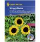 KIEPENKERL Sonnenblume, Helianthus annuus, Samen, Blüte: gelb-Thumbnail