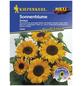 KIEPENKERL Sonnenblume, Valerianella locusta, Samen, Blüte: gelb-Thumbnail