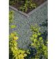 MR. GARDENER Splitt »Arctic Green«, gruen/gruenweiss-Thumbnail