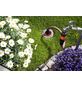 GARDENA Sprinklersystem, Kunststoff-Thumbnail